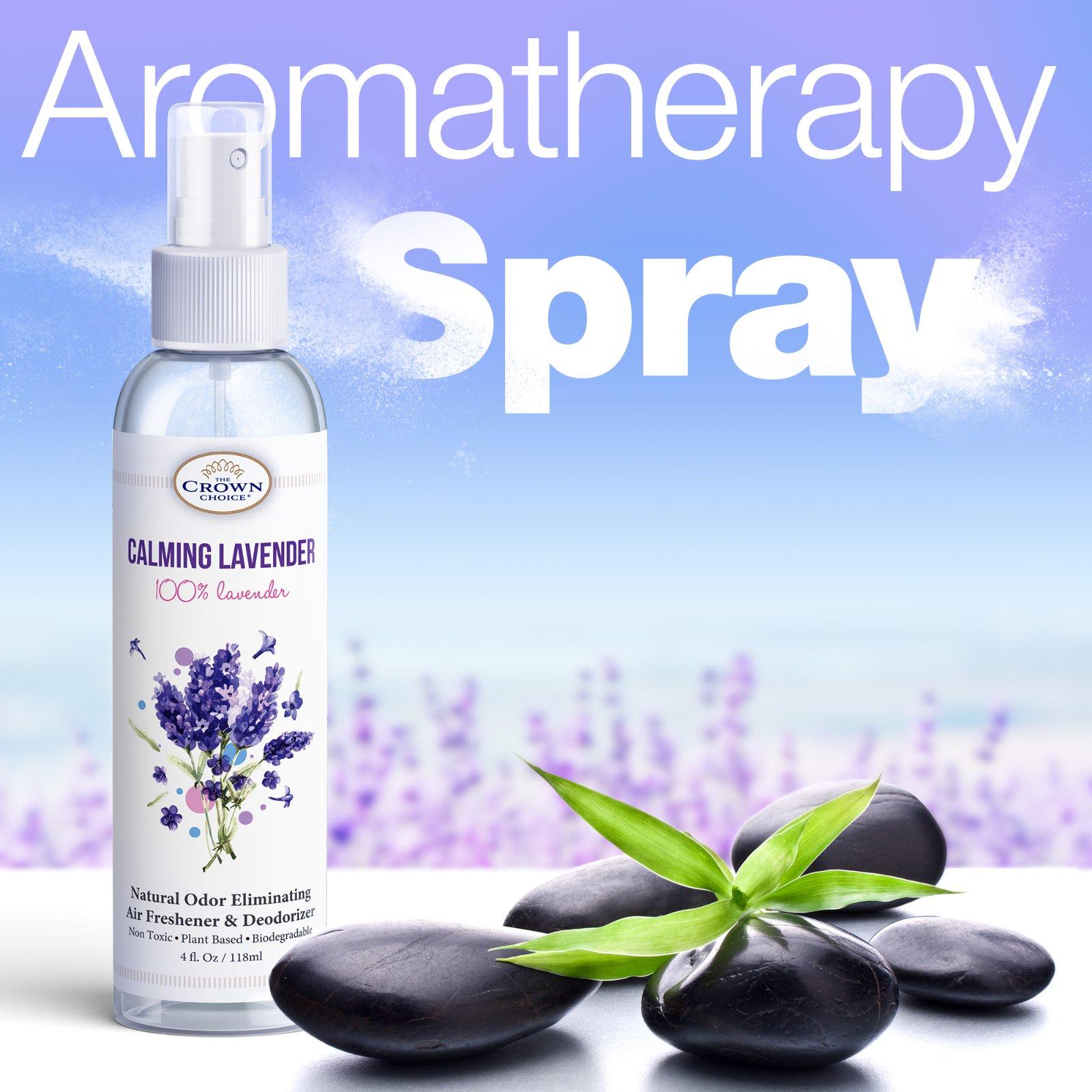 Natural Home Deodorizer and DIY Air Freshener Ideas 1