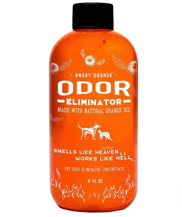 angry orange How to make the best natural pet odor eliminator