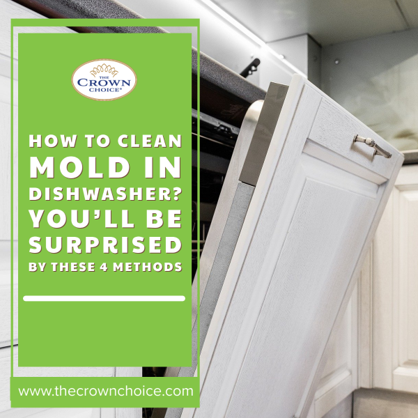 How to Clean Mold in Dishwasher? You'll be Surprised by These 4 Methods
