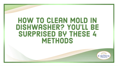 How to Clean Mold in Dishwasher_ You'll be Surprised by These 4 Methods