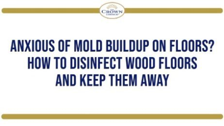 Anxious of Mold Buildup on Floors? How to Disinfect Wood Floors and Keep Them Away