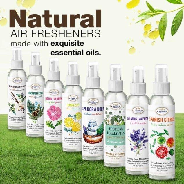 natural air freshener deluxe set