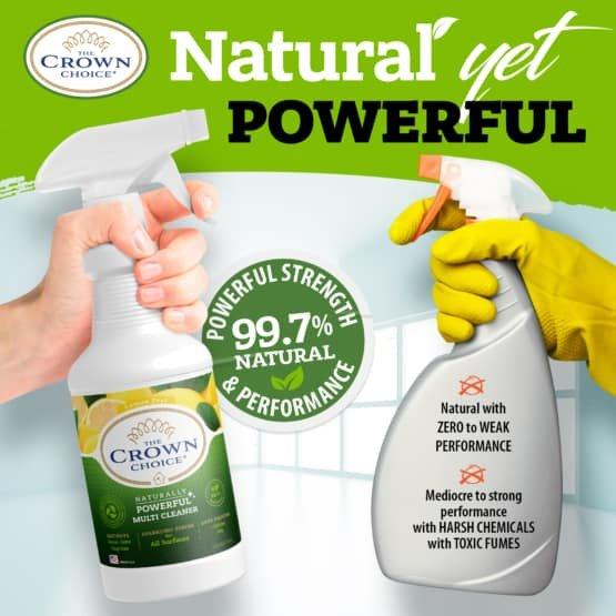 Natural Lemon Zest Multi Cleaner Spray – Essential Oil Lemon Zest Scent 13