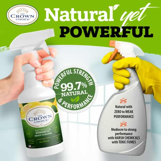 Natural Lemon Zest Multi Cleaner Spray – Essential Oil Lemon Zest Scent 16