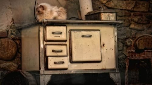 cat on top of dirty oven