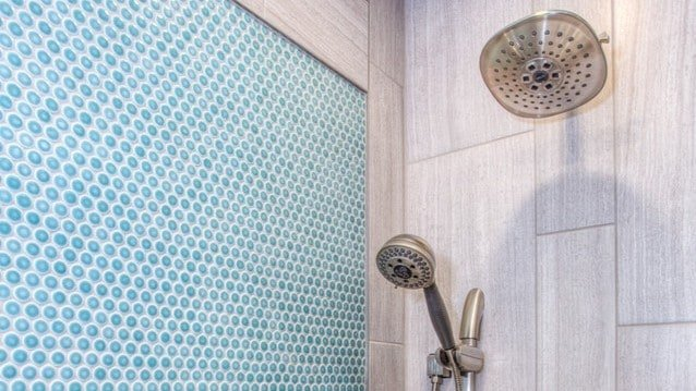 shower and bidet in a blue bathroom