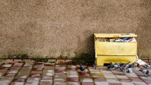 yellow garbage receptacle